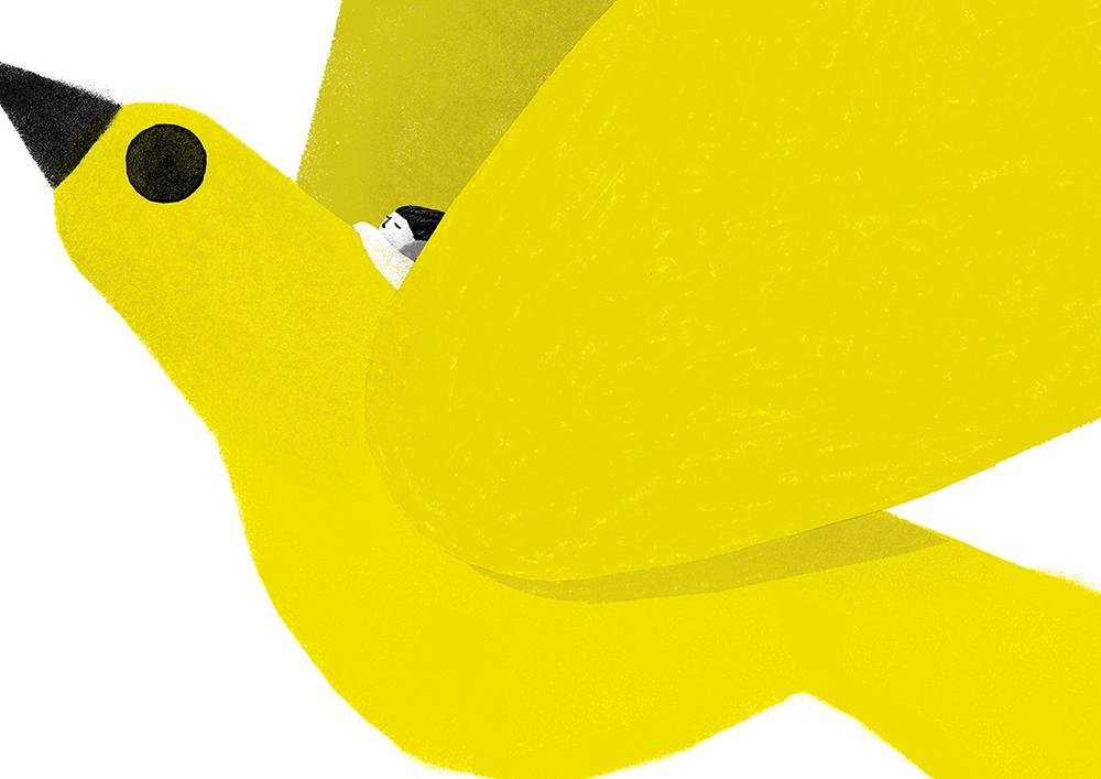 pajaro-amarillo-03_neus-caamaño