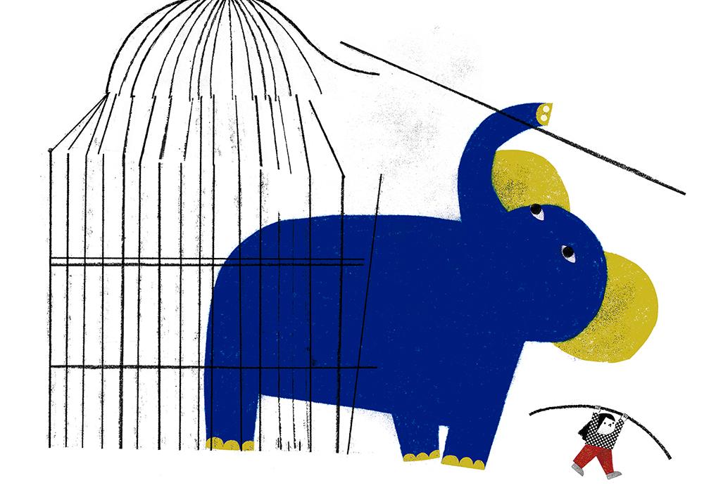 zoo-02_neus-caamaño
